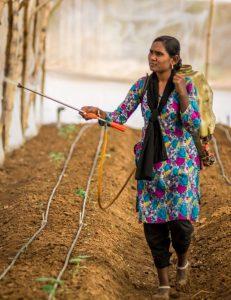 Woman_Farmer_Venu_Gopal_Goundla