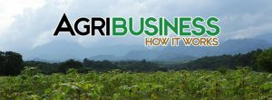 agribusiness investment