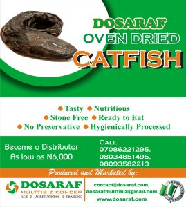 dosaraf oven dried catfish distributorship