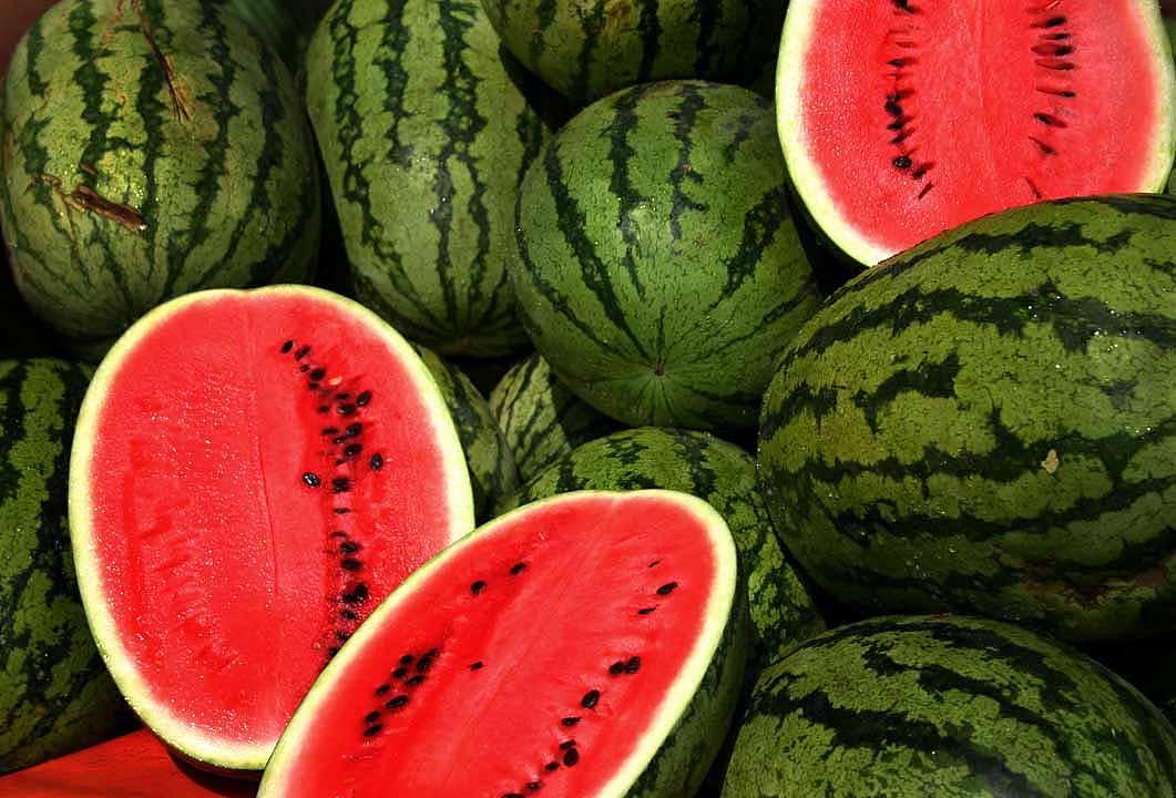 watermelon dosaraf